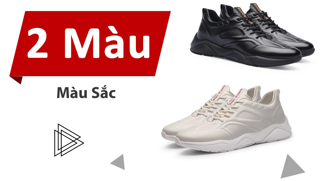 Giày sneaker tăng chiều cao nam tại hà nội