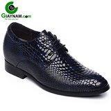 Giày cao nhập khẩu công sở màu xanh thời thượng mã GCD816615X