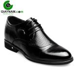 Giày công sở buộc dây tăng chiều cao nhập khẩu 2017 mã GCBDWZ4786D