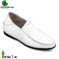 Giày cao nam nhập khẩu sang trọng WS88828